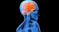 neuroc